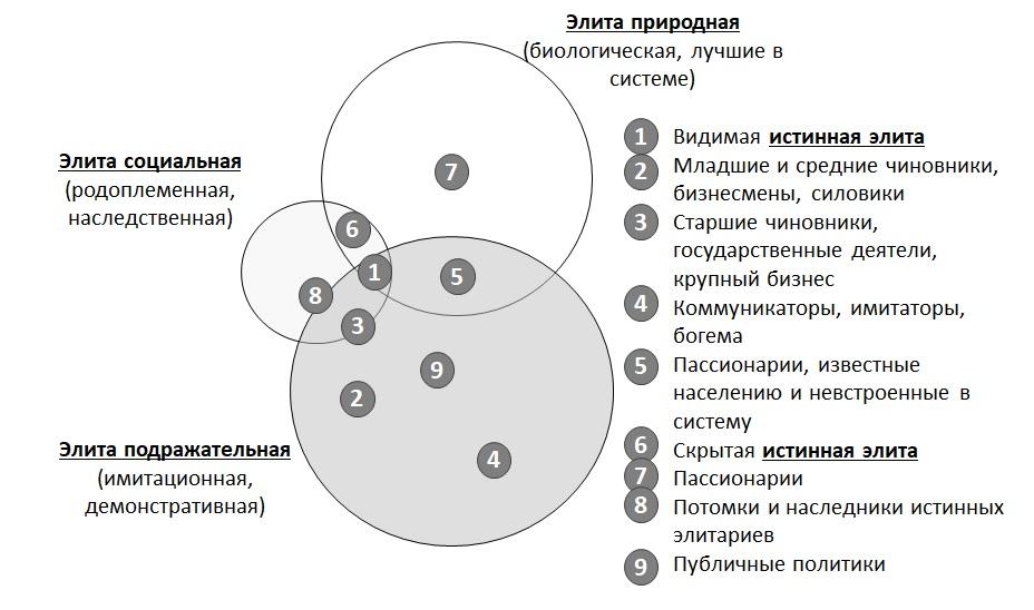 Структура и виды элит